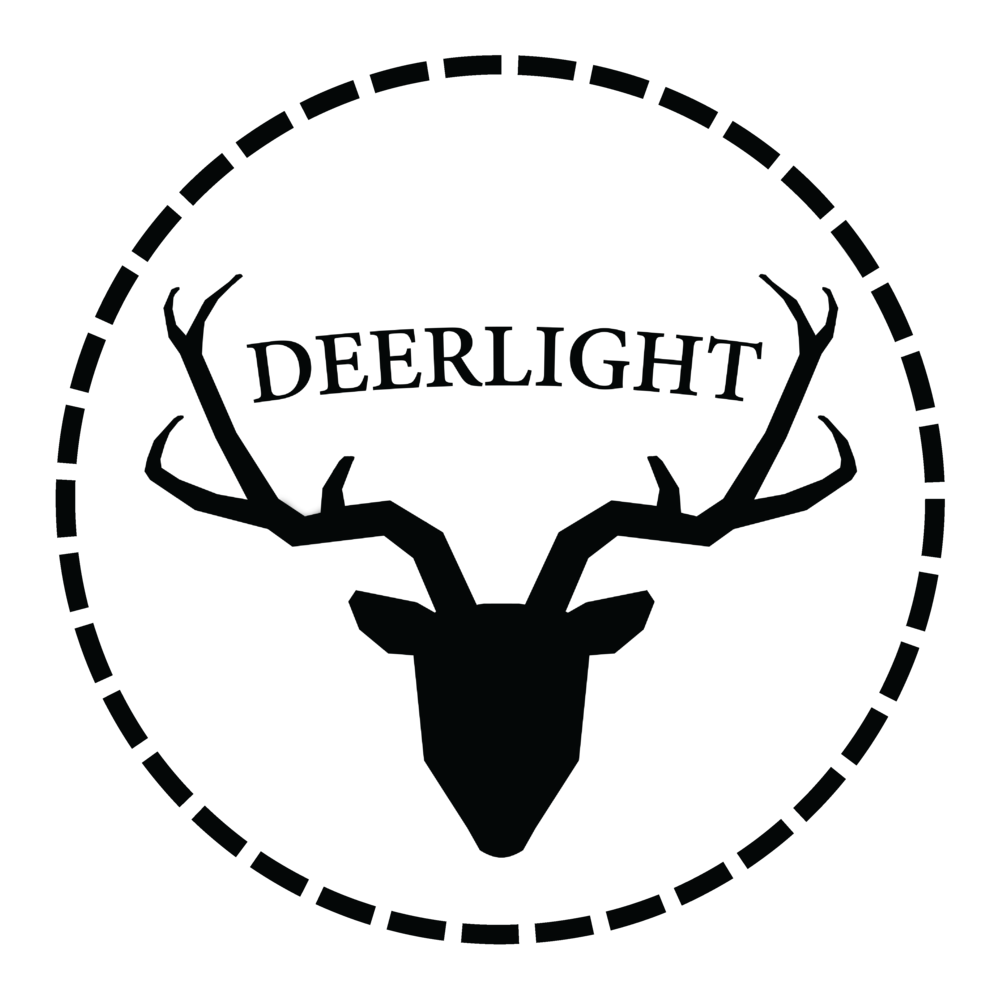 Deerlight Wedding Videography