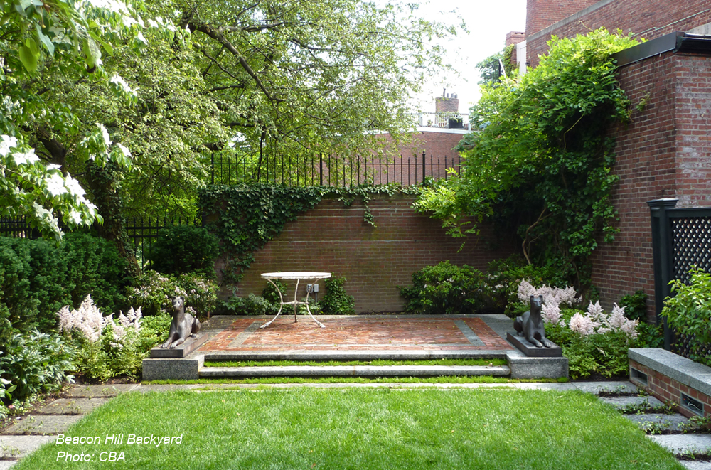 beacon hill backyard.png