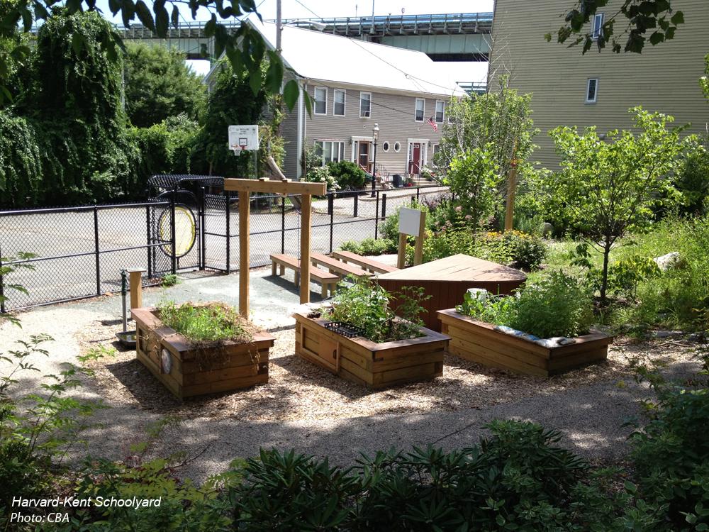 Boston schoolyard initiative cba landscape architects llc for Cba landscape architects