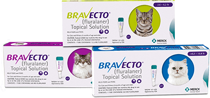 bravecto-topical-solution_@1x.png