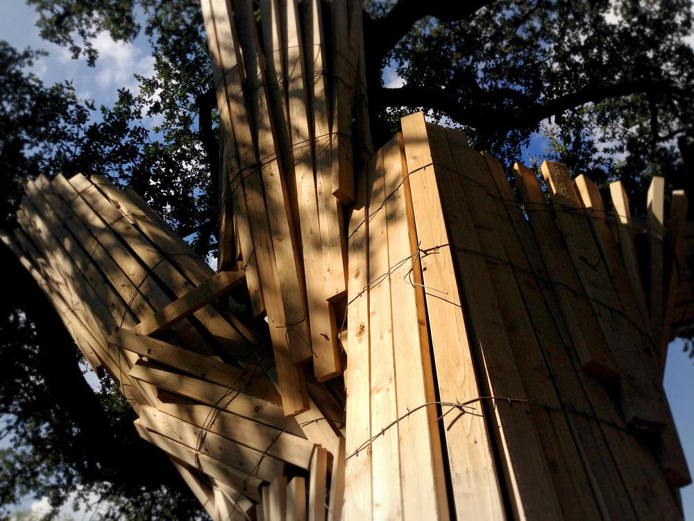 Tree Prot 01 - 2014-09-30.jpg