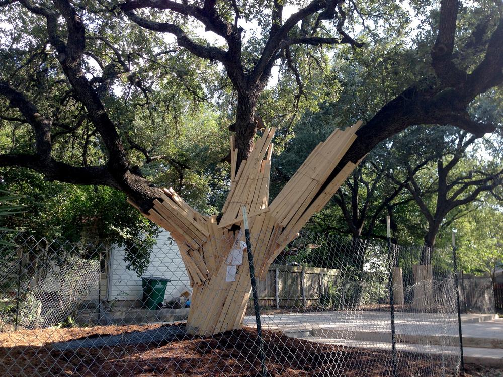 Tree Prot 03 - 2014-09-30.jpg