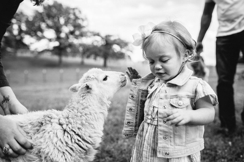 Paige Rains Photography Oklahoma Lifestyle Family Photographer-6.jpg
