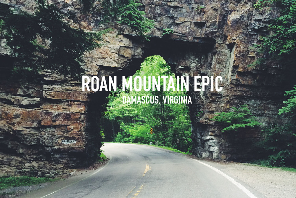 Roan Mountain Epic