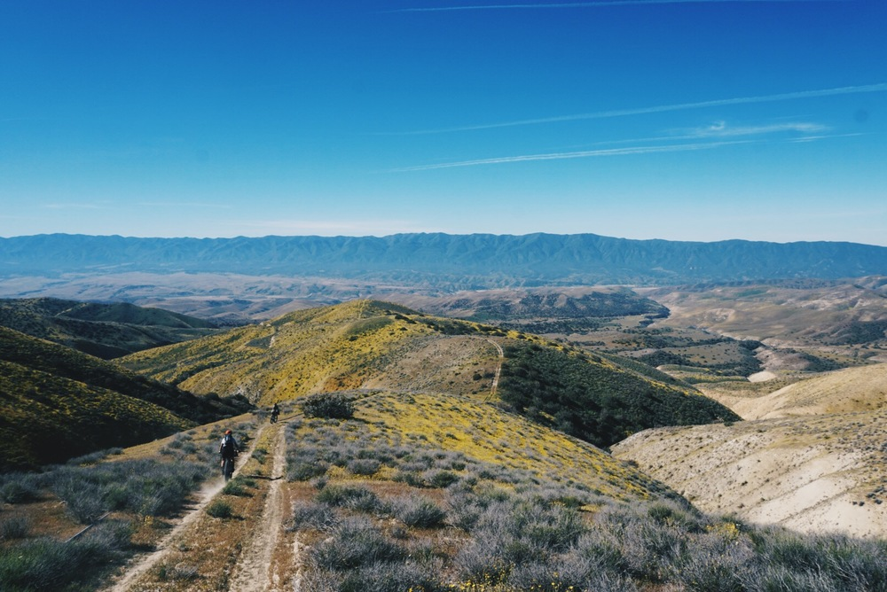 Carrizo Plain Foothills.jpg