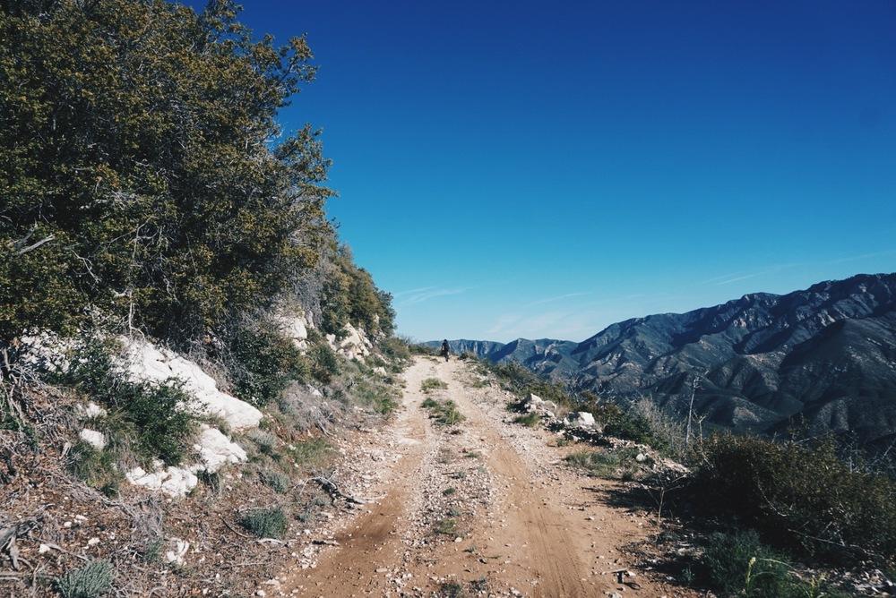 Big Pine Road.jpg