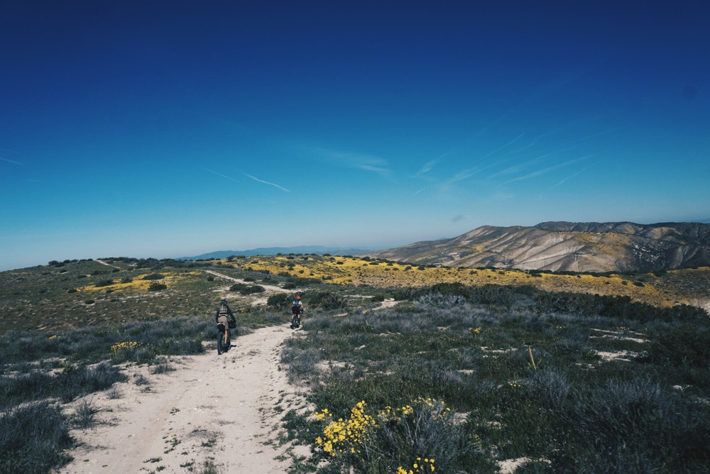 Carrizo Plain.jpg