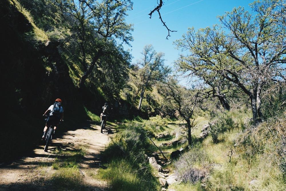 Gillam Spring Trail.jpg