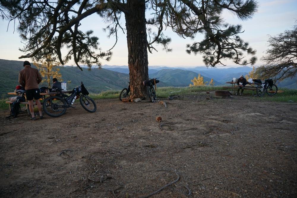 Miranda Pine Camp.jpg