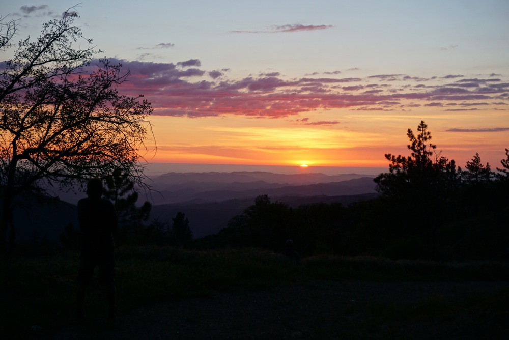 Sunset at Miranda Pines.jpg
