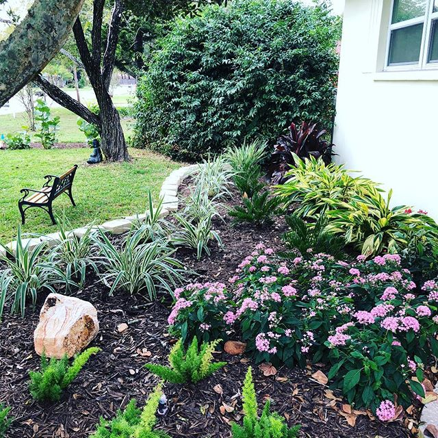 This is a landscape coaching job I did where I coached the owners through the project and they did all the labor. They were very pleased with the results.