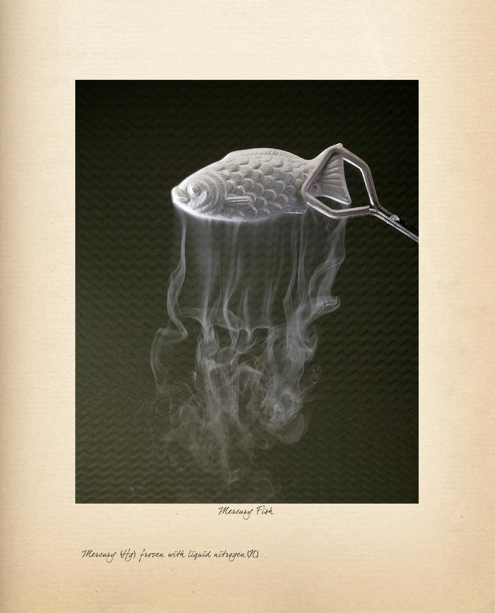 MercuryFish_12.25x15.jpg