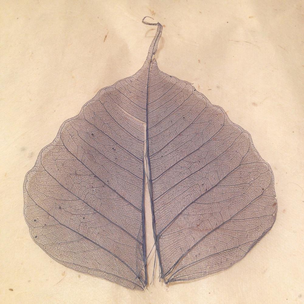 natural pua