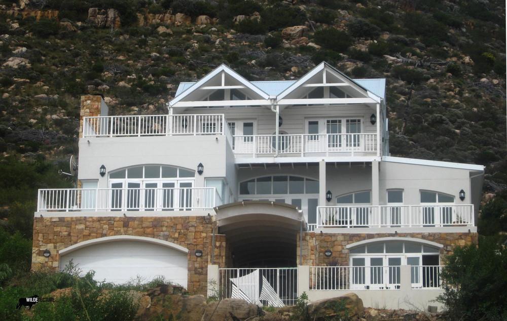 House Dove 4.jpg