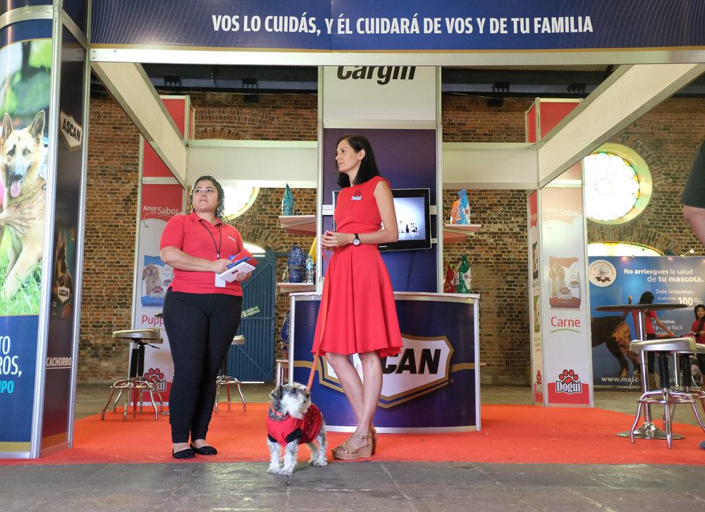 Activaciones BTL Costa Rica