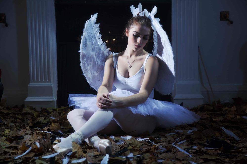 IMG_0984 (1)Black Swan © Marc Aitken 2015.jpg