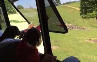 safari trip 2.jpg