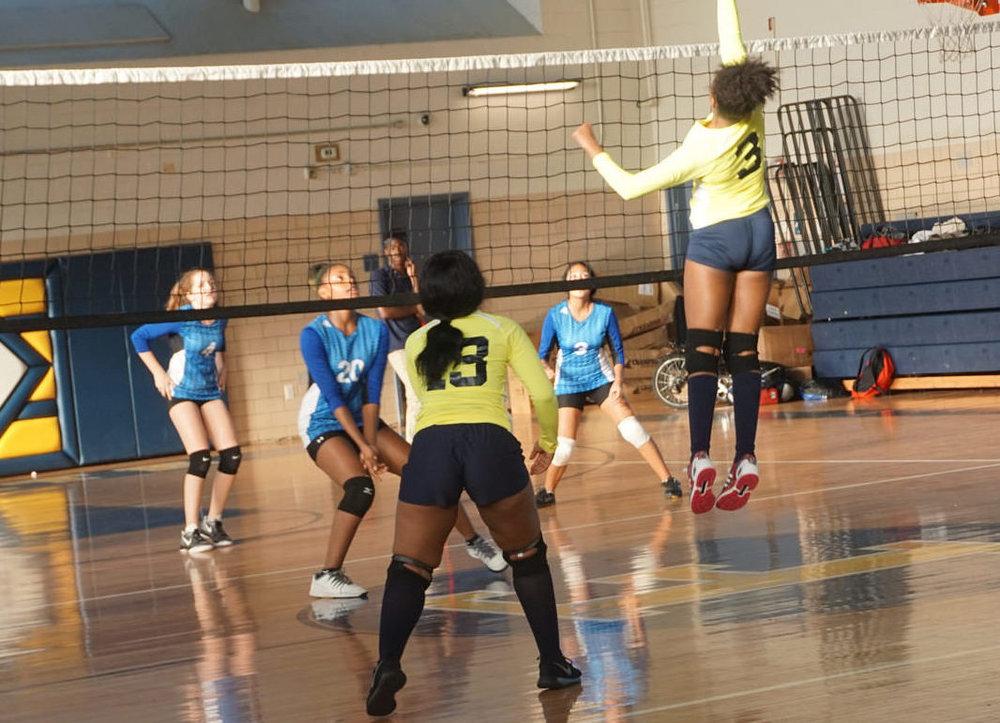volley great.jpg