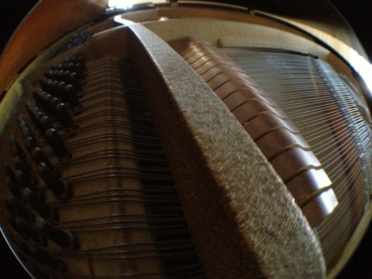 Fisheye Inside Piano