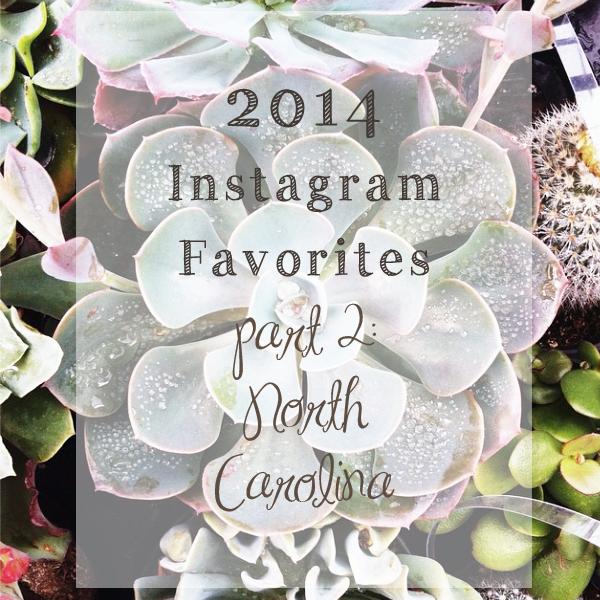 2014instagramhighlights.jpg