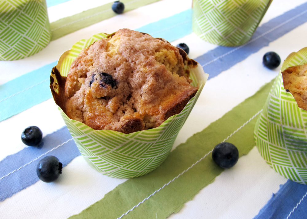 fresh from scratch blueberry muffin recipe