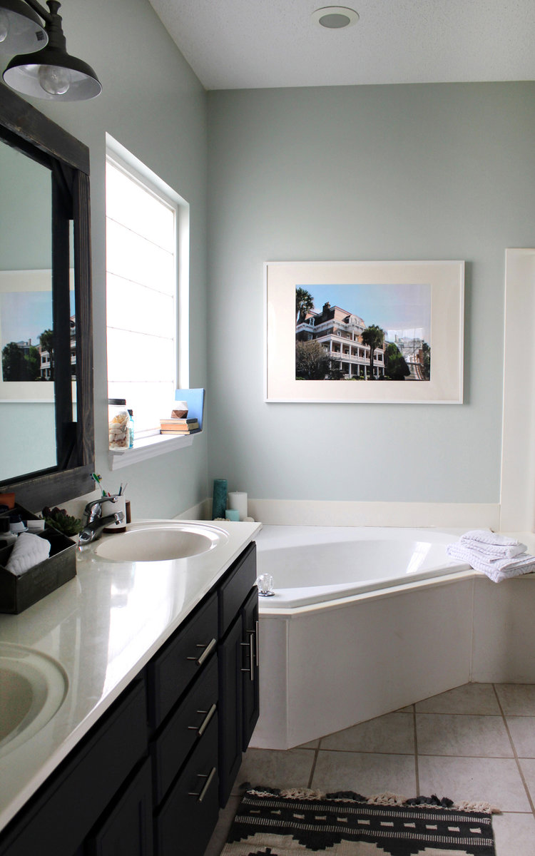 $300 Master Bathroom Remodel — Tag & Tibby