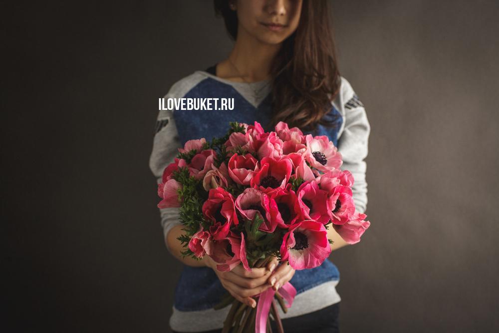 pink-anemone