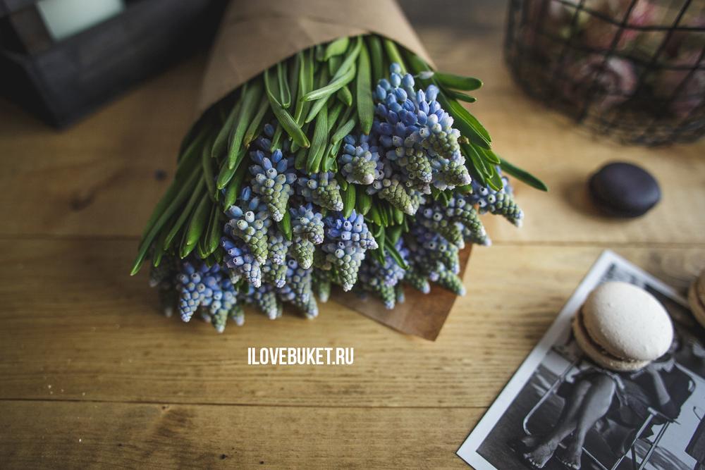 muscari-bouquet-1