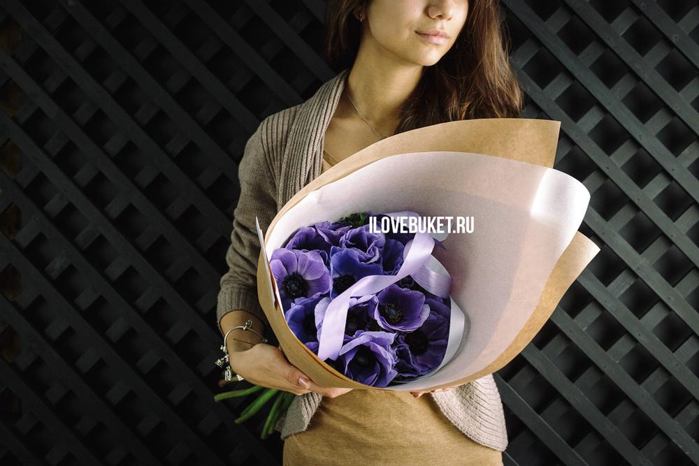 violet-anemone