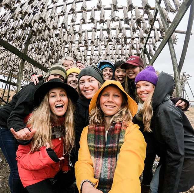 💛 I miss all these beautiful goof balls!!! Indulging in the fun memories and absurd amount of images and videos from @bprsnt women's adventure retreat in Lofoten last week 🙋🏼‍♀️ Here are some #gopro moments from our outing to #henningsvær taking selfies, admiring some unique local industrial art, laughing and smelling dried fish (Very strong smell) Thanks for letting me play mum this week ladies. It was a true honor to host you in my home country, Norway 🇳🇴 #selfie #prsnt #bprsnt #prsnt #😂 #godpromoments #funny #instagood #womensadventure #adventureretreat #smile #art #norway #yellow #fisherman