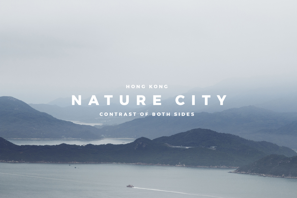 Nature City cover.jpg