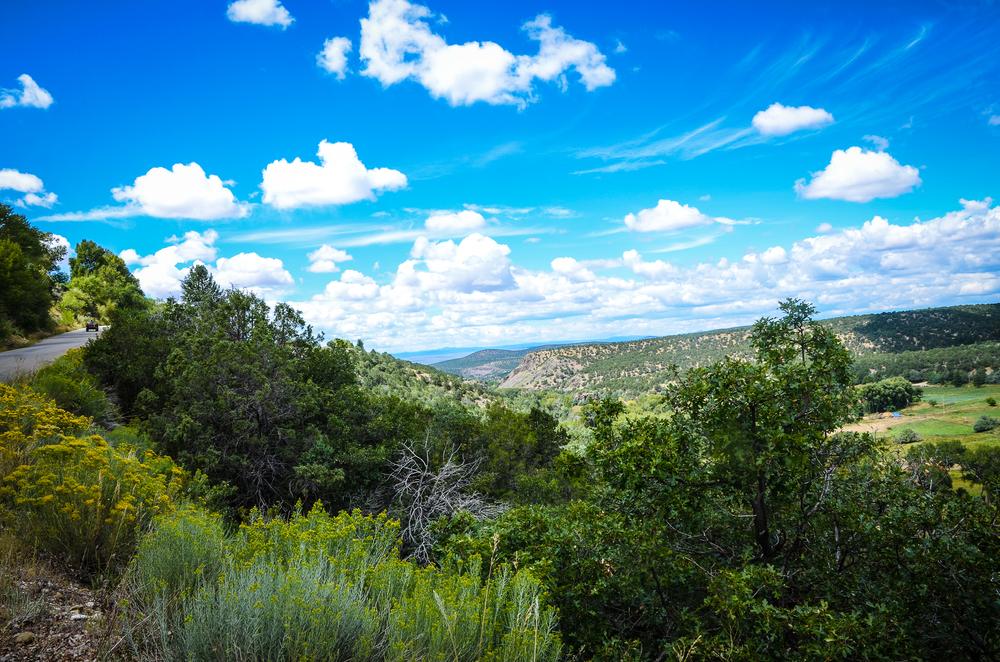 Taos (19 of 211).jpg