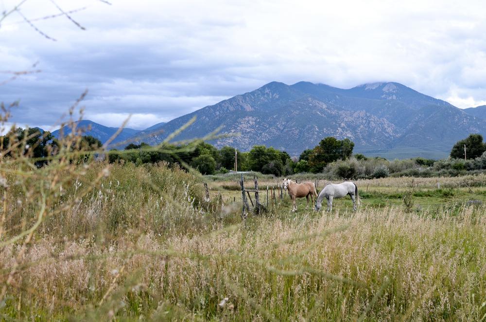 Taos (98 of 211).jpg