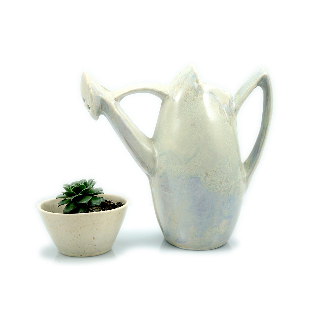 Watering Can and Plant1 copy.jpg