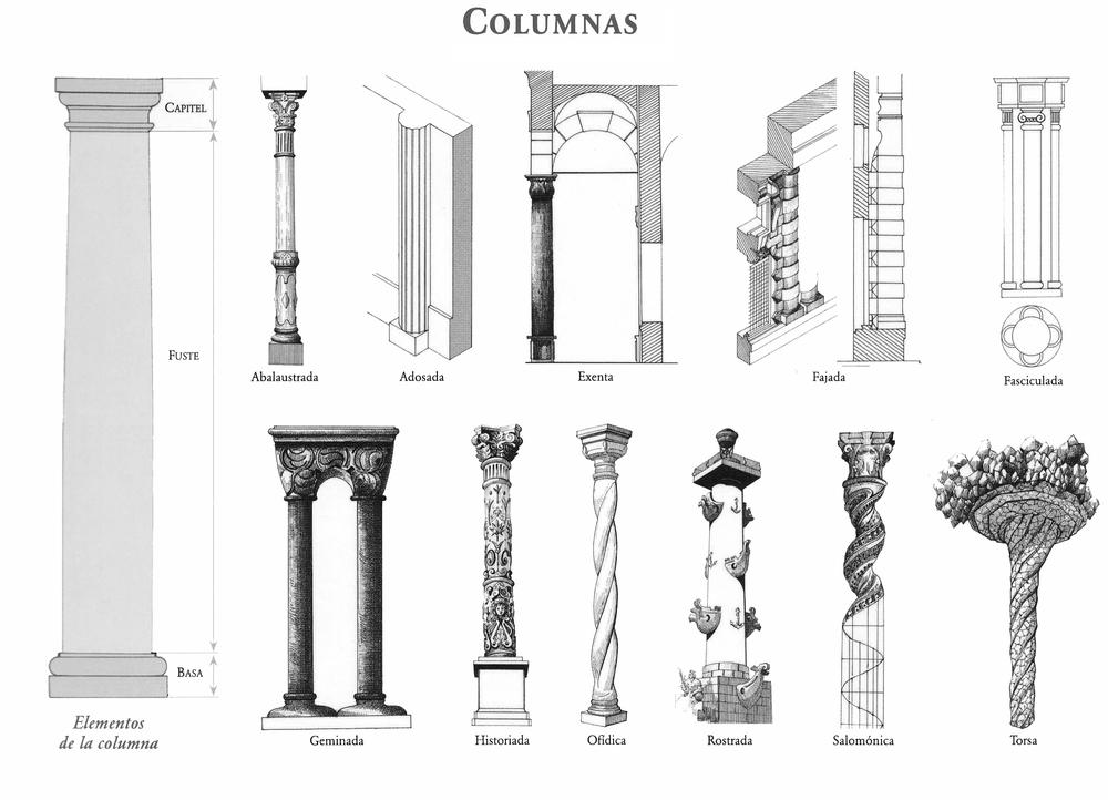partes-de-la-columna.png