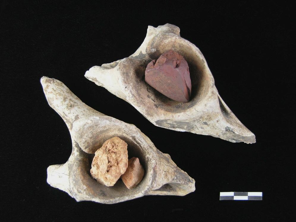 Óxidos de hierro utilizados en la cueva de Altamira sobre huesos de cadera.