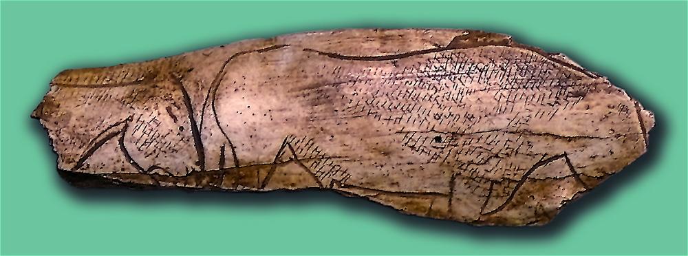 El Pendo. Cueva cántabra.Cabalos grabados en Hueso.
