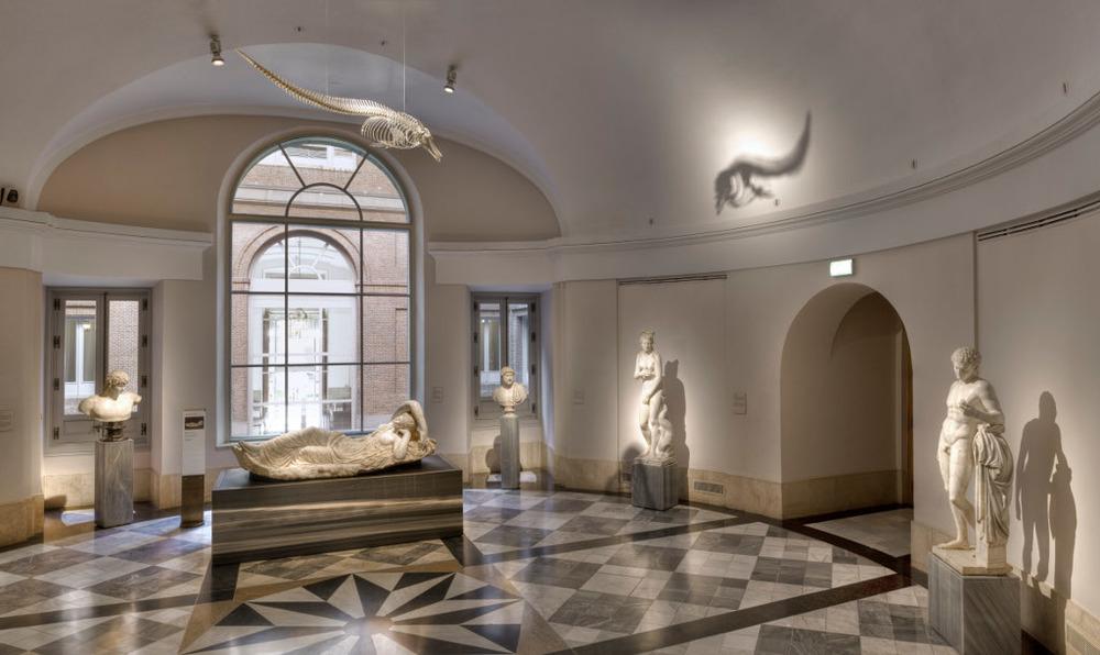 Un leviatán engulle a una Diosa(Sala 74), Taller romano, Venus del delfín, MNP, Esqueleto de delfín, MNCN- CSIC Foto: Pedro Albornoz/Museo Nacional del Prado