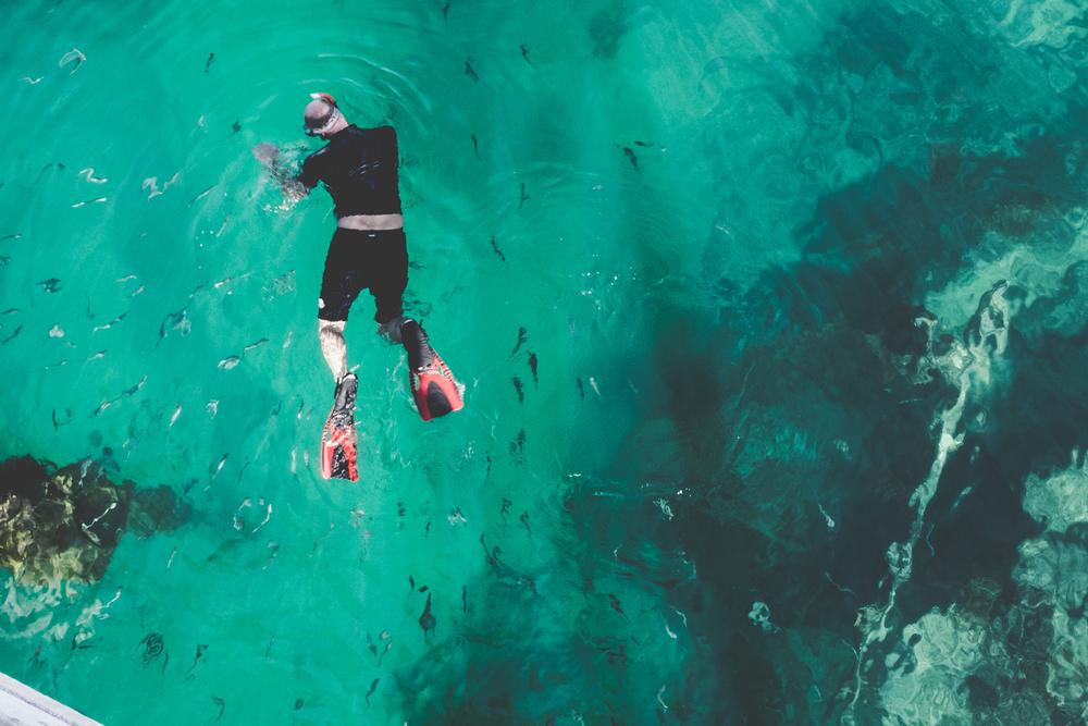 snorkeling-beach.jpg