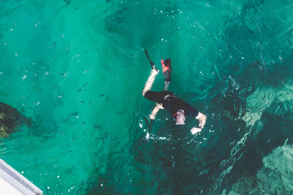 beach-snorkeling-swimming.jpg