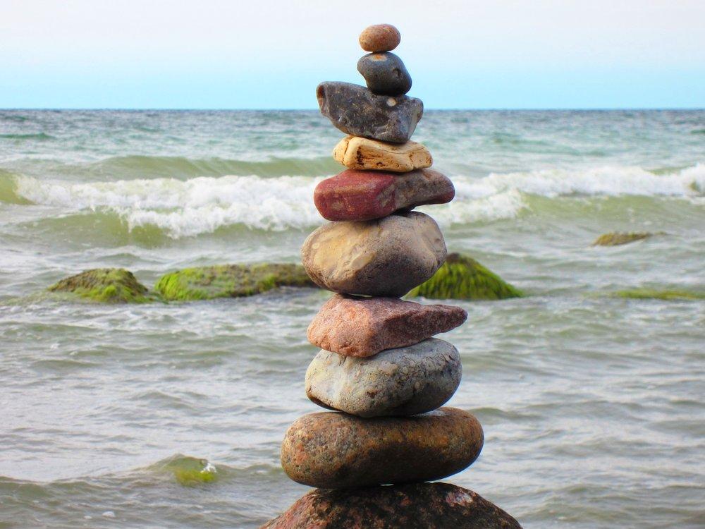 friedfell+Hund+Mensch+Balance.jpg
