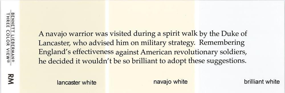 NavajoLancasterBrilliantforweb.jpg