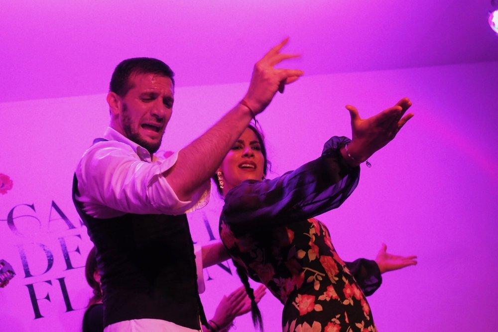 Flamenco, Granada (mit Testkamera  Olympus OM-D E-M1 Mark II)