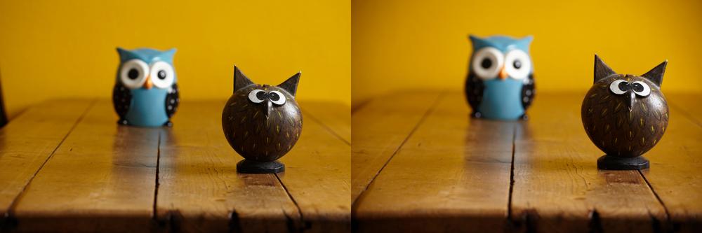 De foto's waar bovenstaande uitsnedes uit zijn gehaald. In de realiteit worden foto's vaak niet op volledige grootte weergegeven en zijn de verschillen in scherpte veel minder belangrijk. Kun jij zien welke foto van de Tamron lens is, en welke van de Canon? Beide foto's zijn wat mij betreft prima bruikbaar.