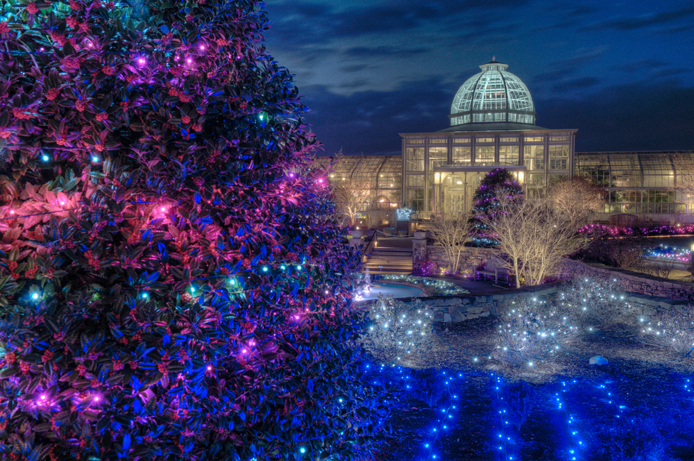 Dominion GardenFest of Lights Conservatory on the side  2012 Don Williamson_edited-1.jpg