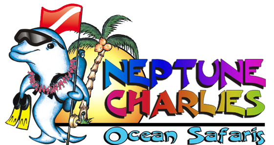 Neptune Charlies Ocean Safaris