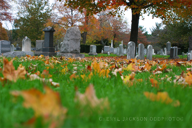 Riverview Cemetery, Trenton, NJ - October 28, 2012