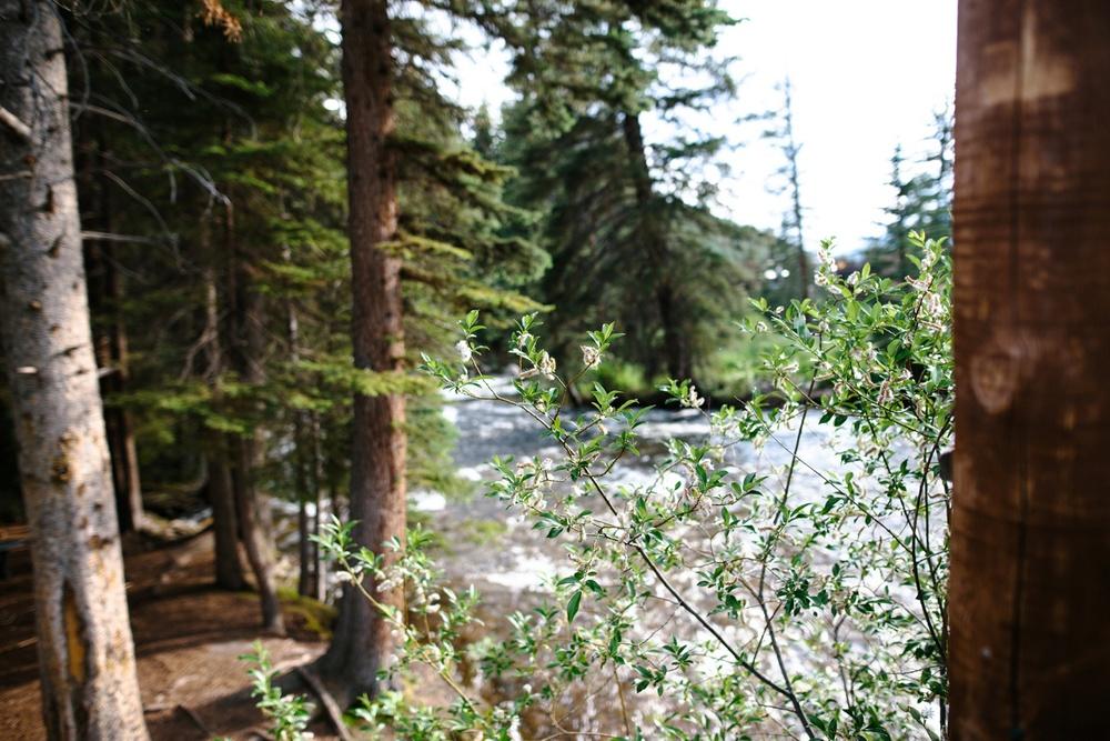 Vail_Colorado_Mountain_Elopement_Photos_0054.jpg