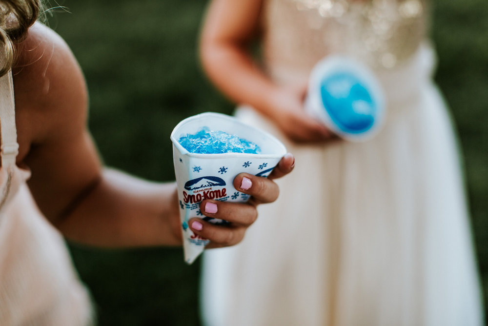 Kayla-Cody-Midwest-Summer-Backyard-Wedding-129.jpg