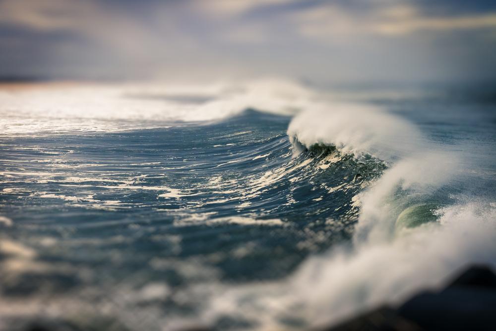surfBeach_00000.png